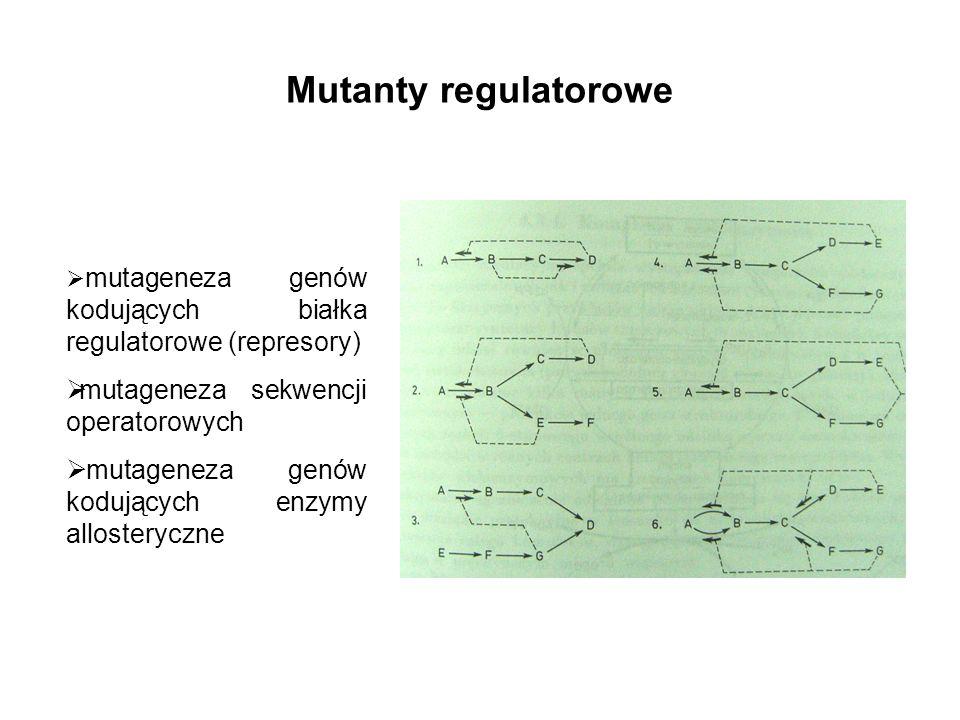 Mutanty regulatorowe mutageneza sekwencji operatorowych