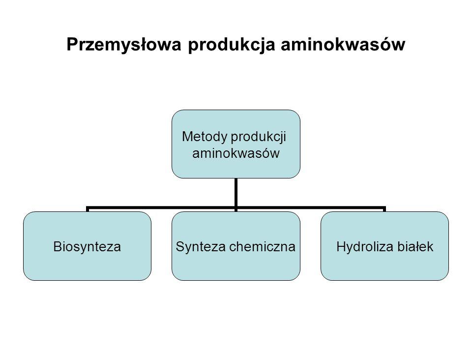 Przemysłowa produkcja aminokwasów