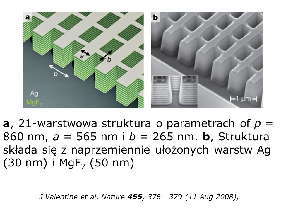 J Valentine et al. Nature 455, 376 - 379 (11 Aug 2008),