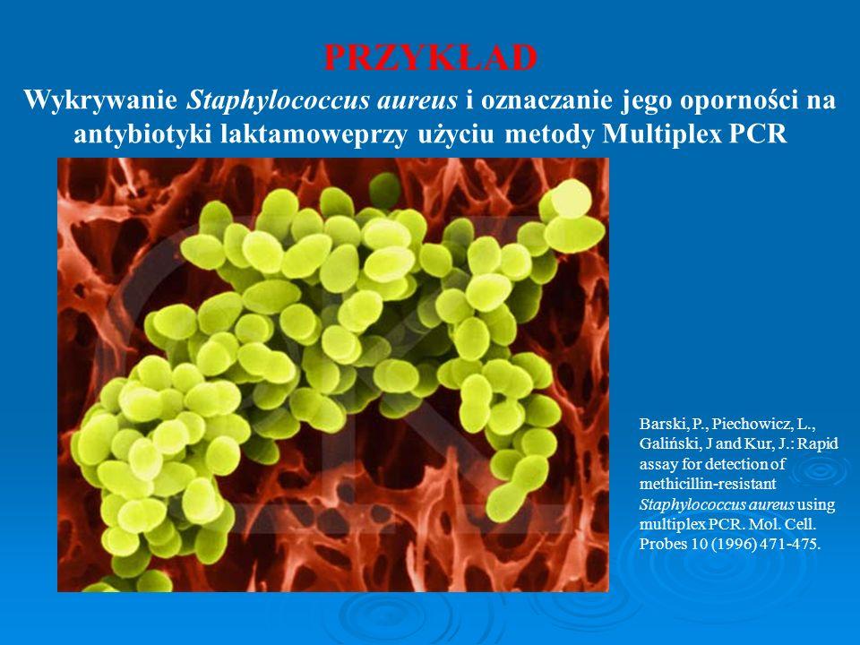 PRZYKŁAD Wykrywanie Staphylococcus aureus i oznaczanie jego oporności na antybiotyki laktamoweprzy użyciu metody Multiplex PCR.