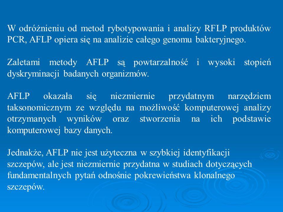 W odróżnieniu od metod rybotypowania i analizy RFLP produktów PCR, AFLP opiera się na analizie całego genomu bakteryjnego.