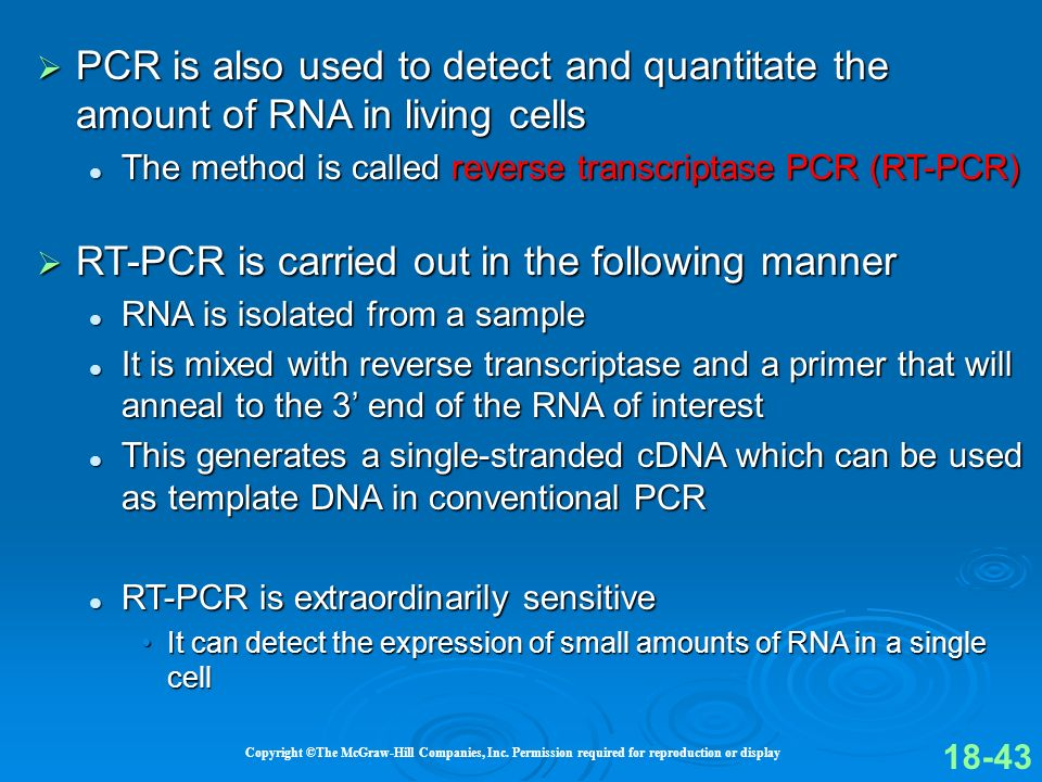 RT-PCR is carried out in the following manner