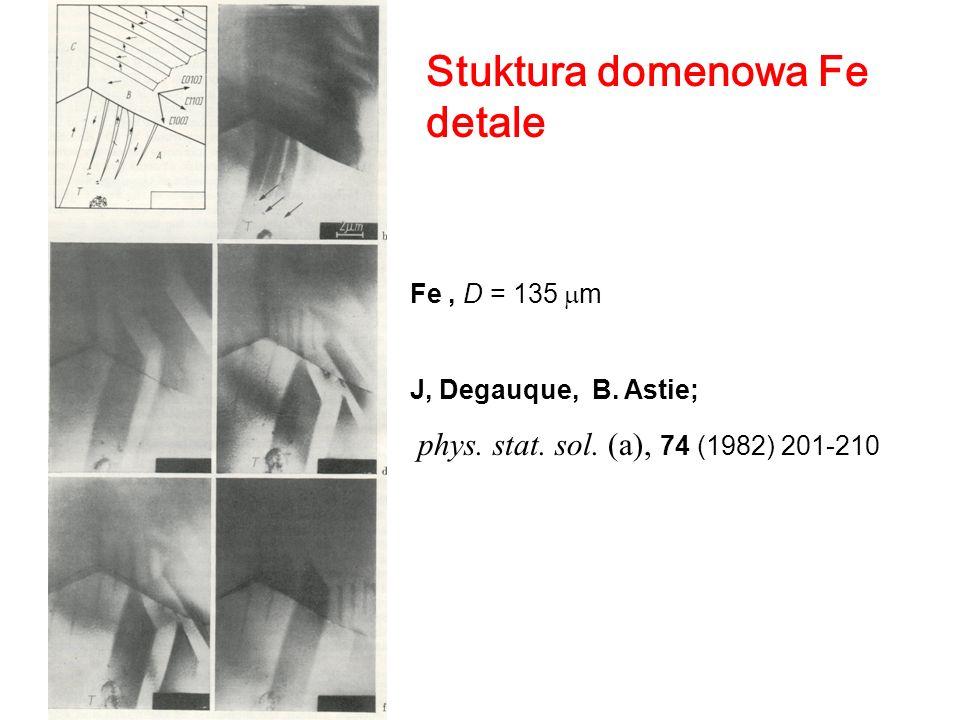 Stuktura domenowa Fe detale