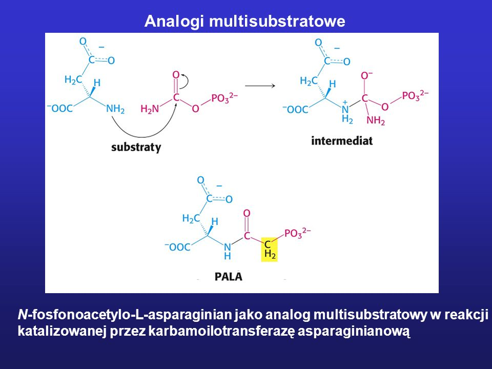 Analogi multisubstratowe
