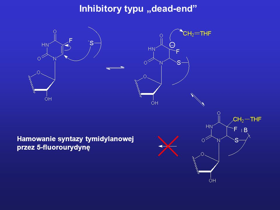 "Inhibitory typu ""dead-end"