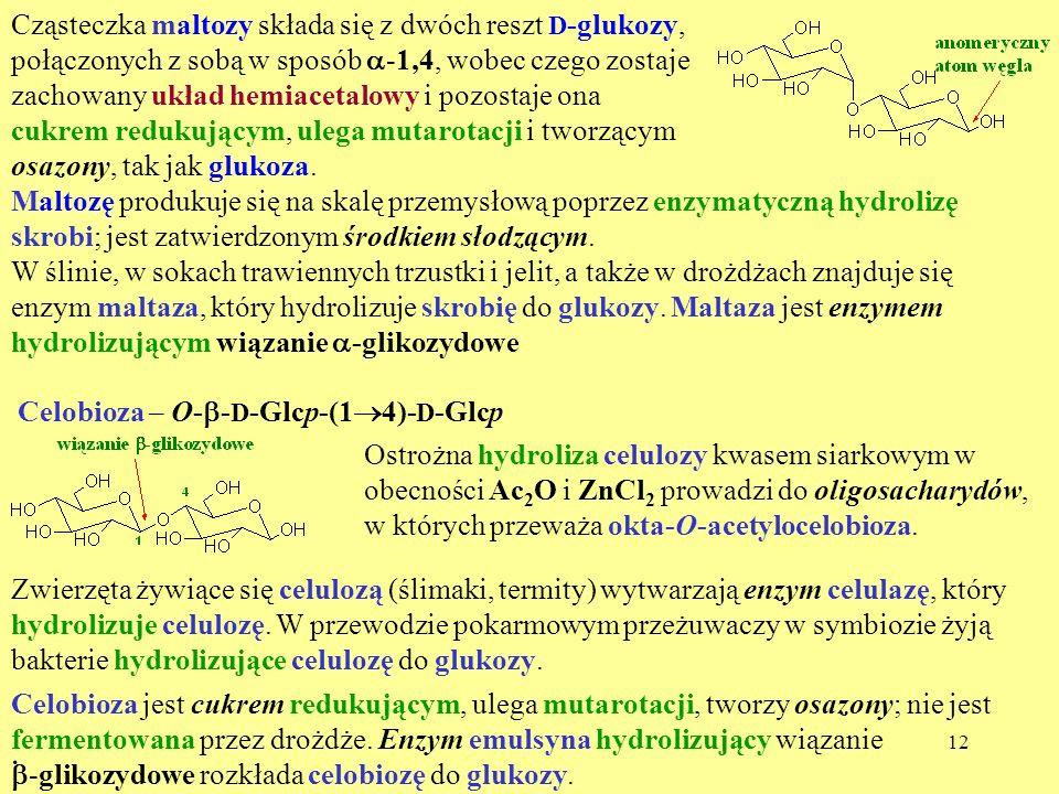 Cząsteczka maltozy składa się z dwóch reszt D-glukozy, połączonych z sobą w sposób a-1,4, wobec czego zostaje zachowany układ hemiacetalowy i pozostaje ona cukrem redukującym, ulega mutarotacji i tworzącym osazony, tak jak glukoza.