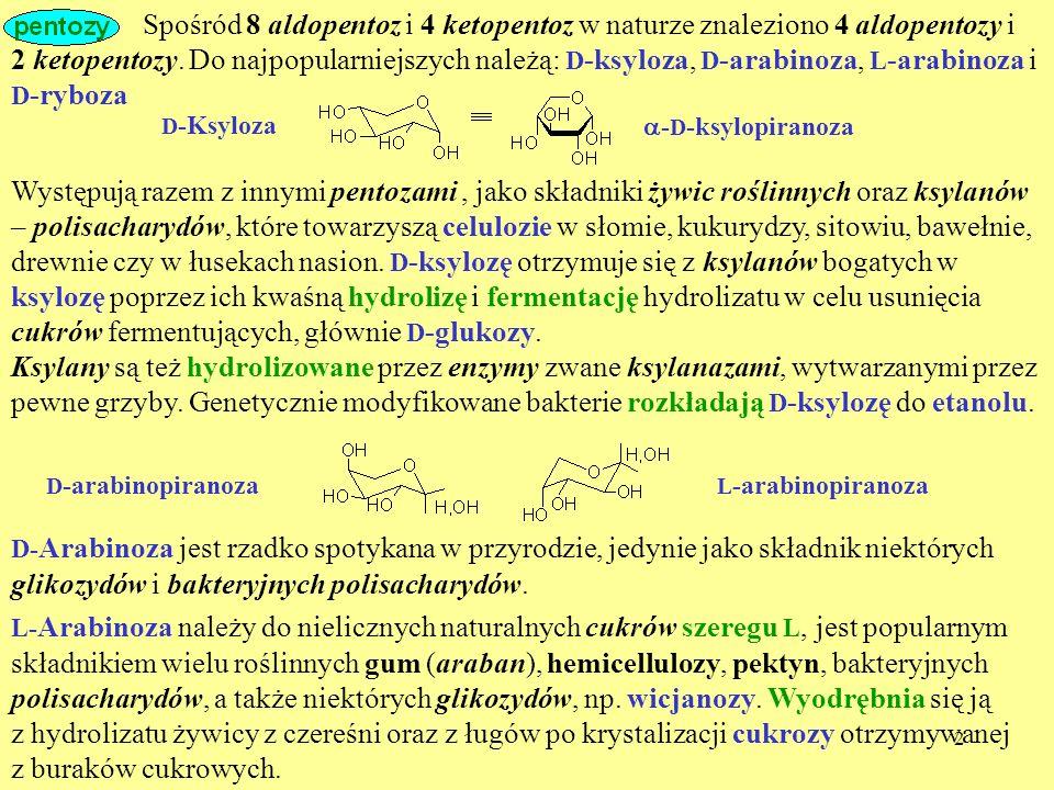 Spośród 8 aldopentoz i 4 ketopentoz w naturze znaleziono 4 aldopentozy i