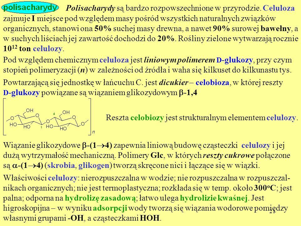 Polisacharydy są bardzo rozpowszechnione w przyrodzie