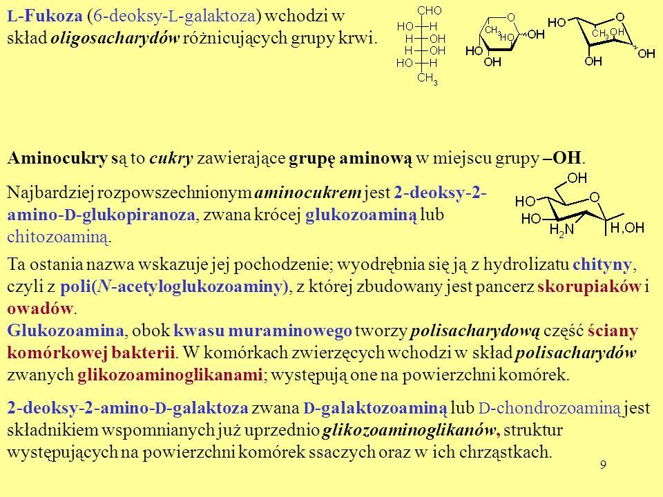 Aminocukry są to cukry zawierające grupę aminową w miejscu grupy –OH.