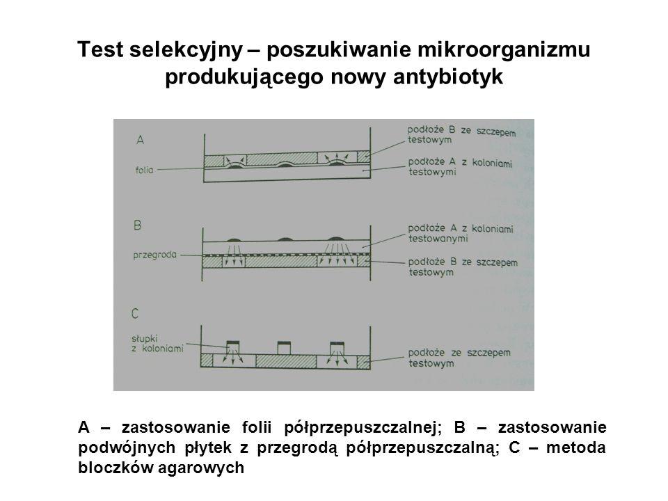 Test selekcyjny – poszukiwanie mikroorganizmu produkującego nowy antybiotyk