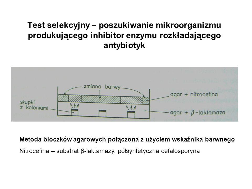 Test selekcyjny – poszukiwanie mikroorganizmu produkującego inhibitor enzymu rozkładającego antybiotyk