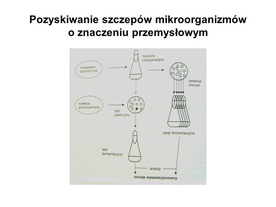 Pozyskiwanie szczepów mikroorganizmów o znaczeniu przemysłowym