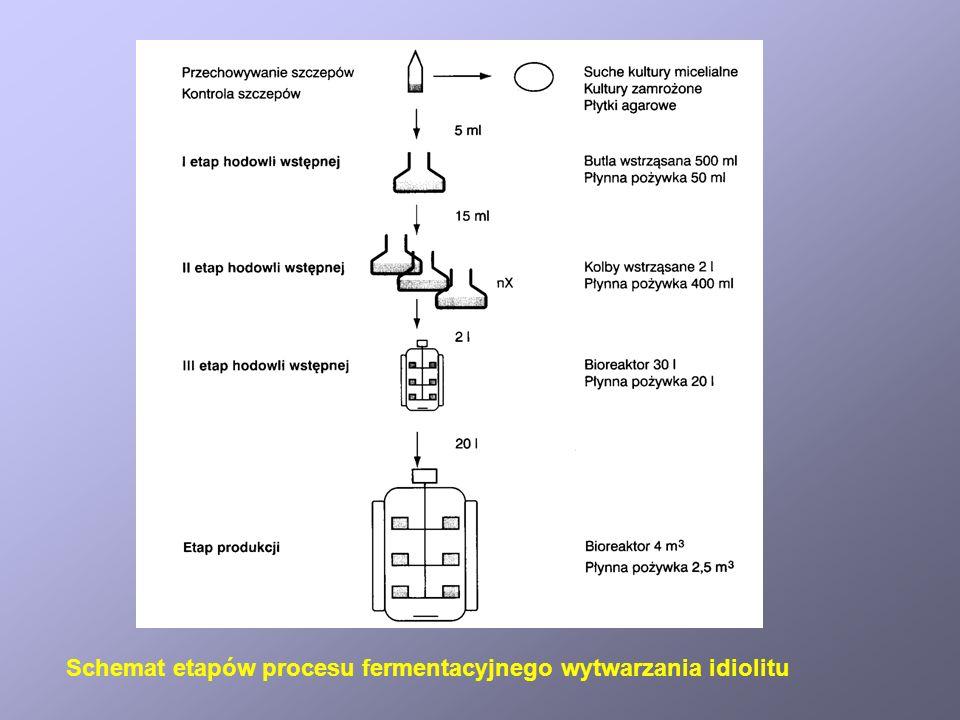 Schemat etapów procesu fermentacyjnego wytwarzania idiolitu