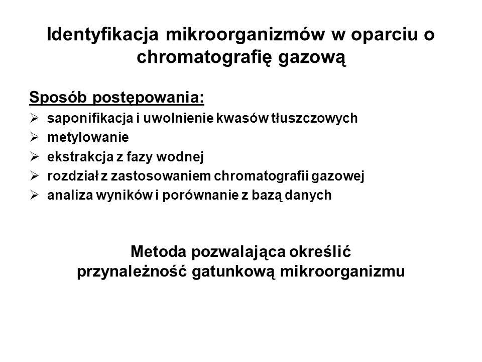 Identyfikacja mikroorganizmów w oparciu o chromatografię gazową
