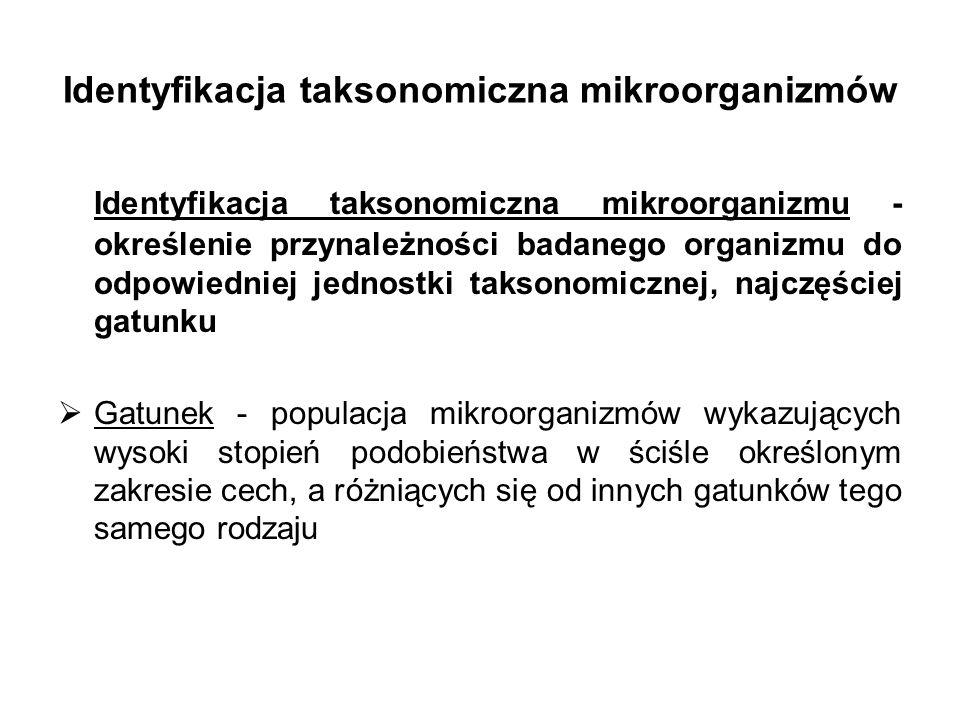 Identyfikacja taksonomiczna mikroorganizmów