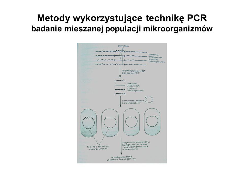 Metody wykorzystujące technikę PCR badanie mieszanej populacji mikroorganizmów