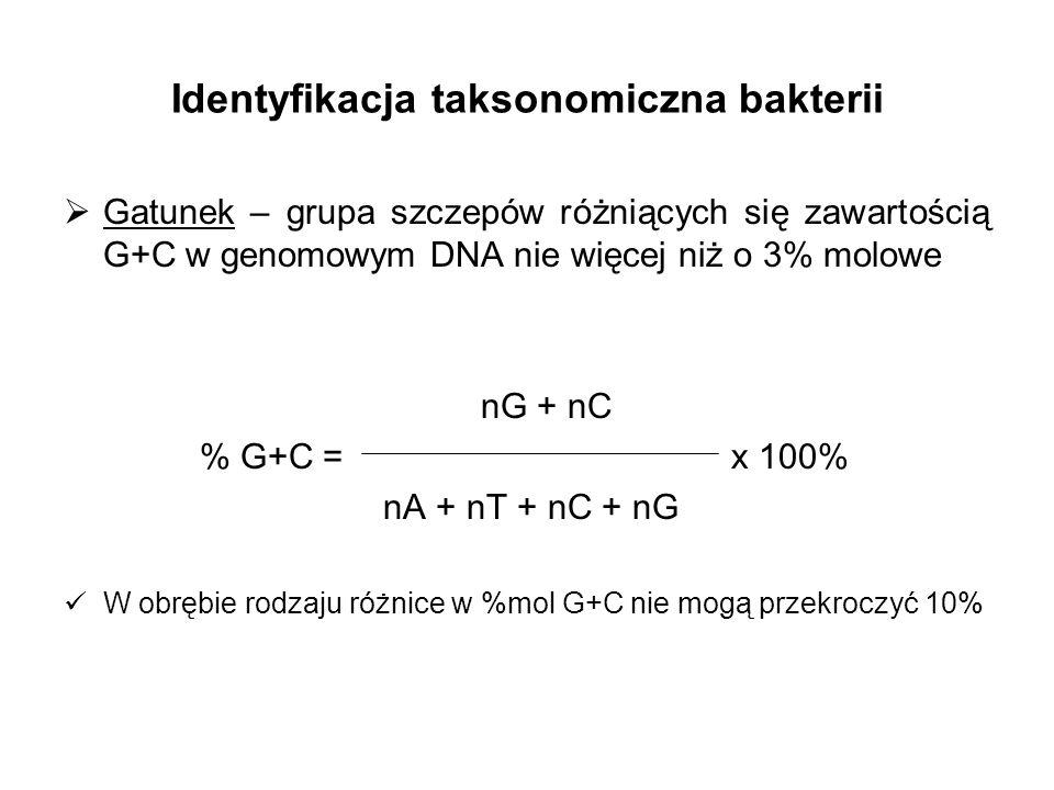 Identyfikacja taksonomiczna bakterii