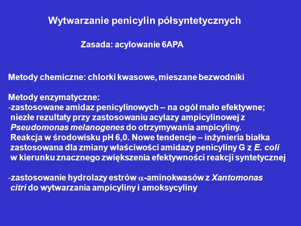Wytwarzanie penicylin półsyntetycznych