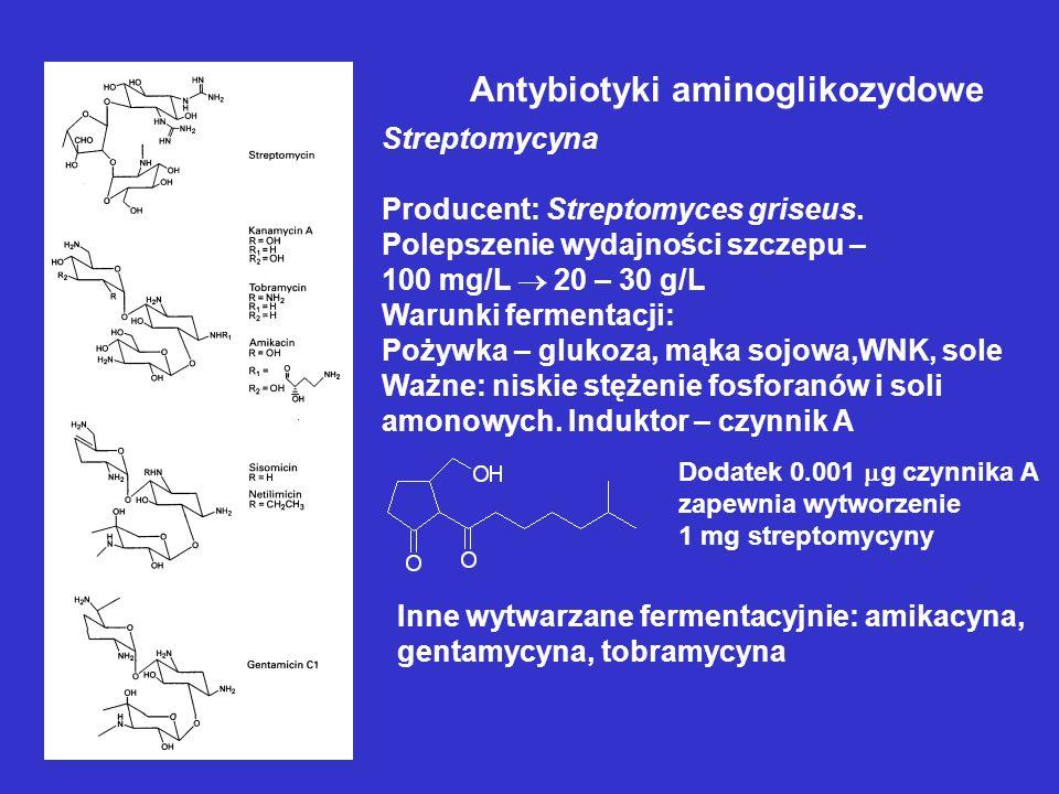 Antybiotyki aminoglikozydowe