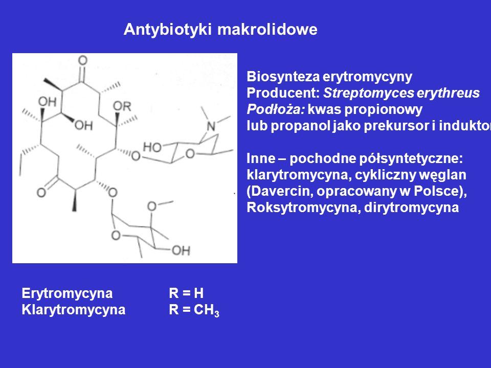 Antybiotyki makrolidowe