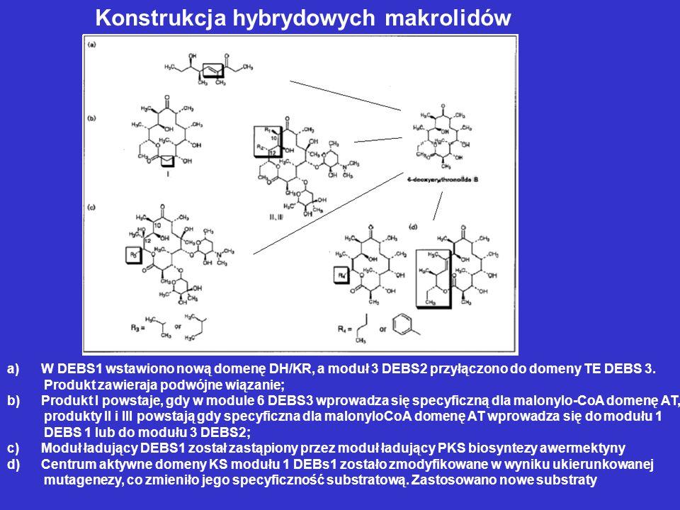 Konstrukcja hybrydowych makrolidów