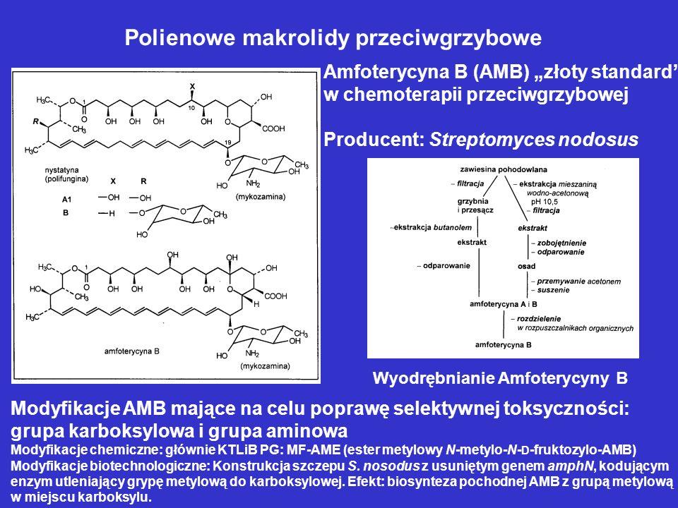 Polienowe makrolidy przeciwgrzybowe