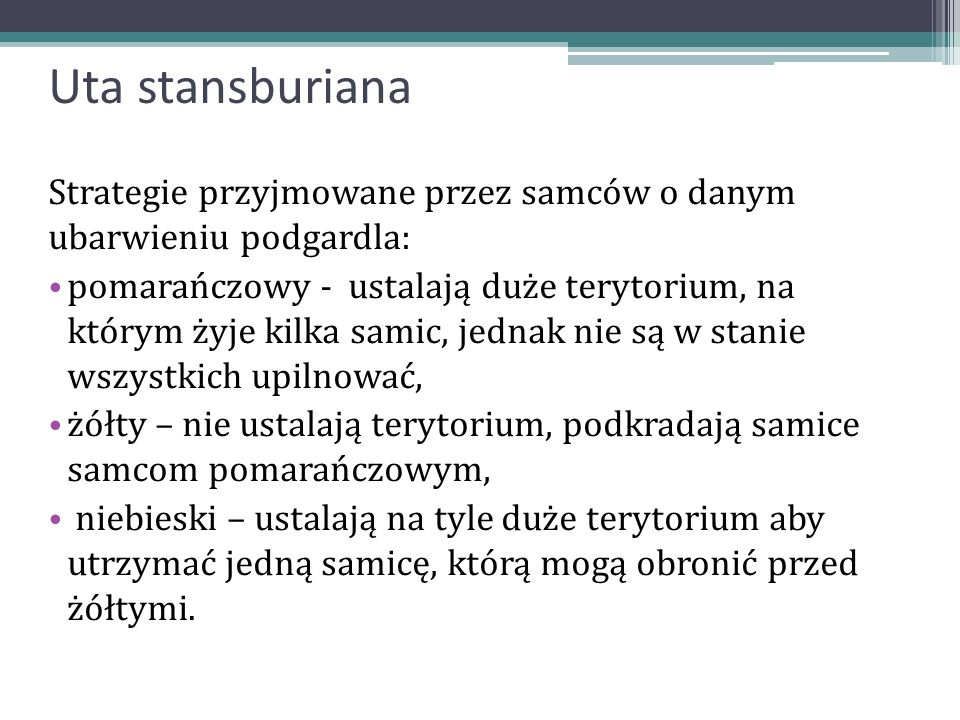 Uta stansburianaStrategie przyjmowane przez samców o danym ubarwieniu podgardla: