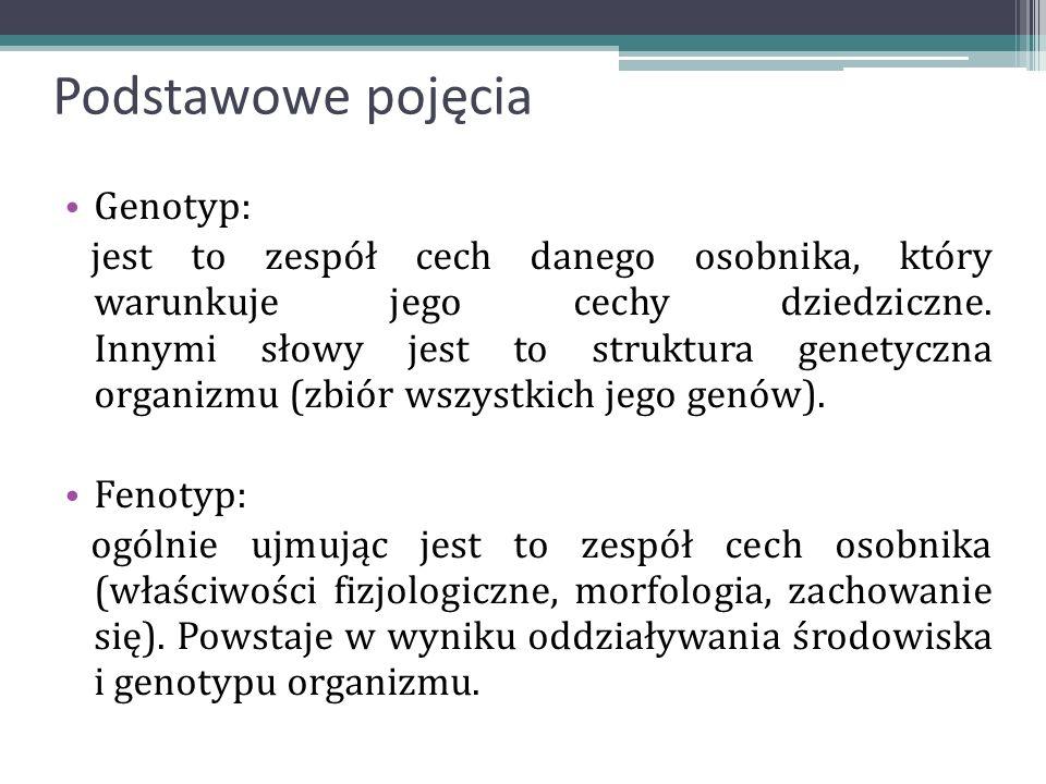 Podstawowe pojęcia Genotyp: