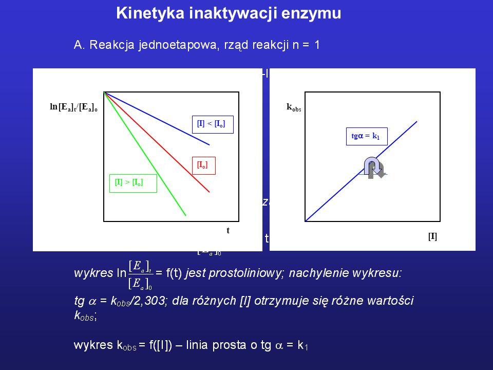 Kinetyka inaktywacji enzymu