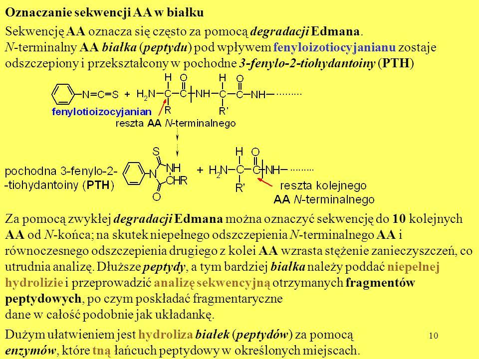 Oznaczanie sekwencji AA w białku