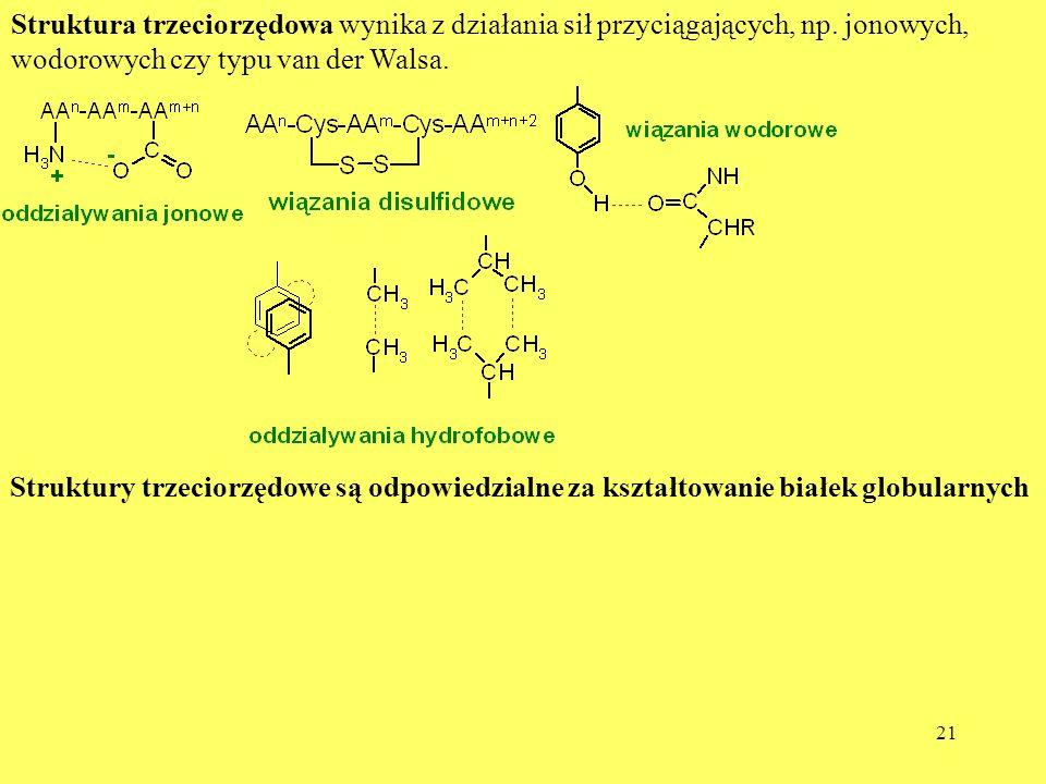 Struktura trzeciorzędowa wynika z działania sił przyciągających, np