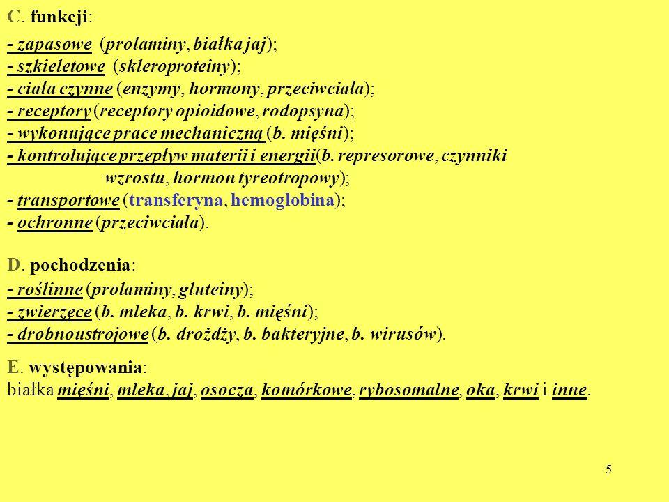 C. funkcji:- zapasowe (prolaminy, białka jaj); - szkieletowe (skleroproteiny); - ciała czynne (enzymy, hormony, przeciwciała);