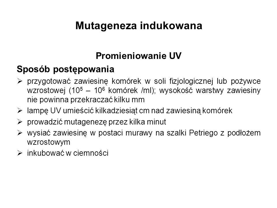 Mutageneza indukowana