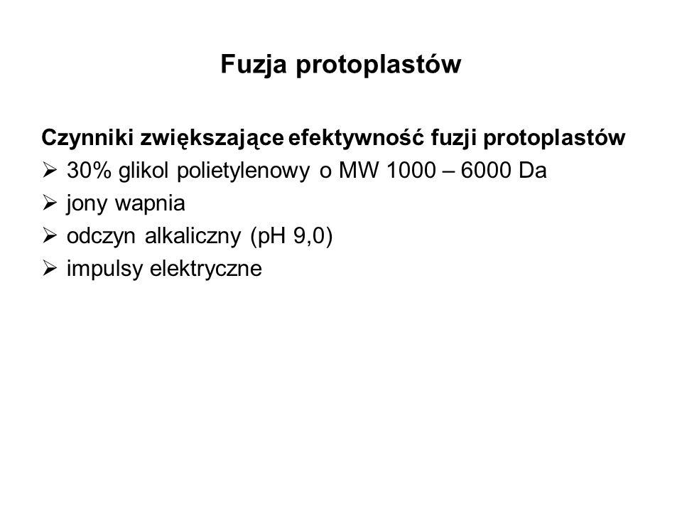 Fuzja protoplastów Czynniki zwiększające efektywność fuzji protoplastów. 30% glikol polietylenowy o MW 1000 – 6000 Da.