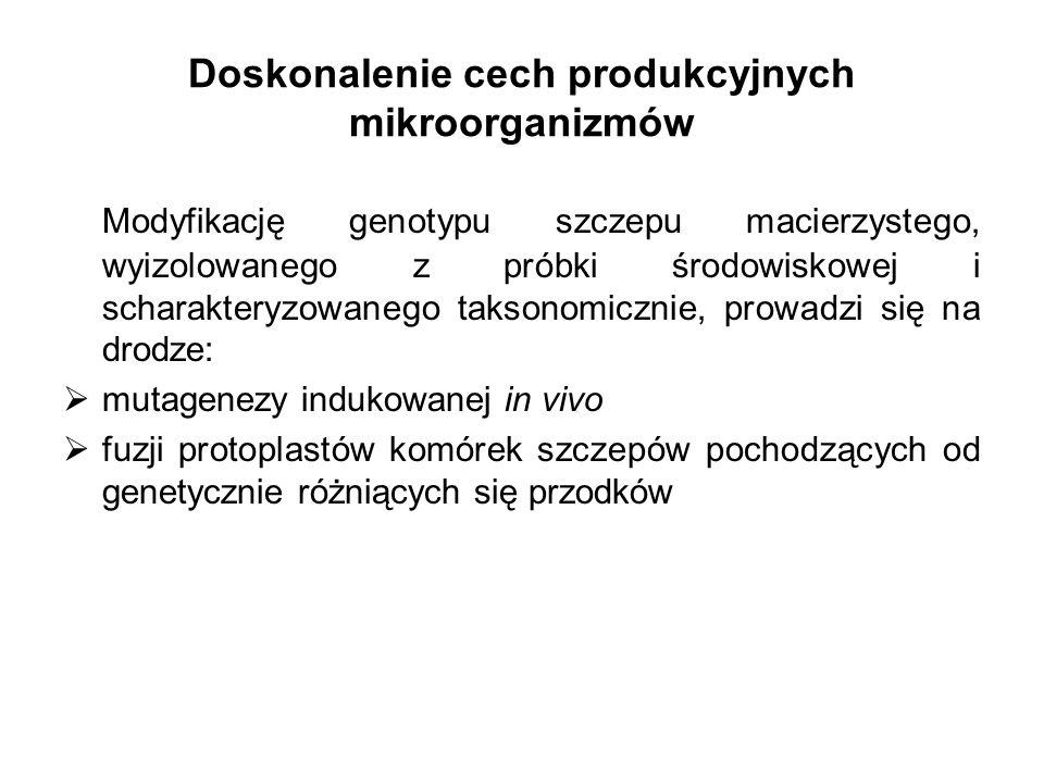 Doskonalenie cech produkcyjnych mikroorganizmów