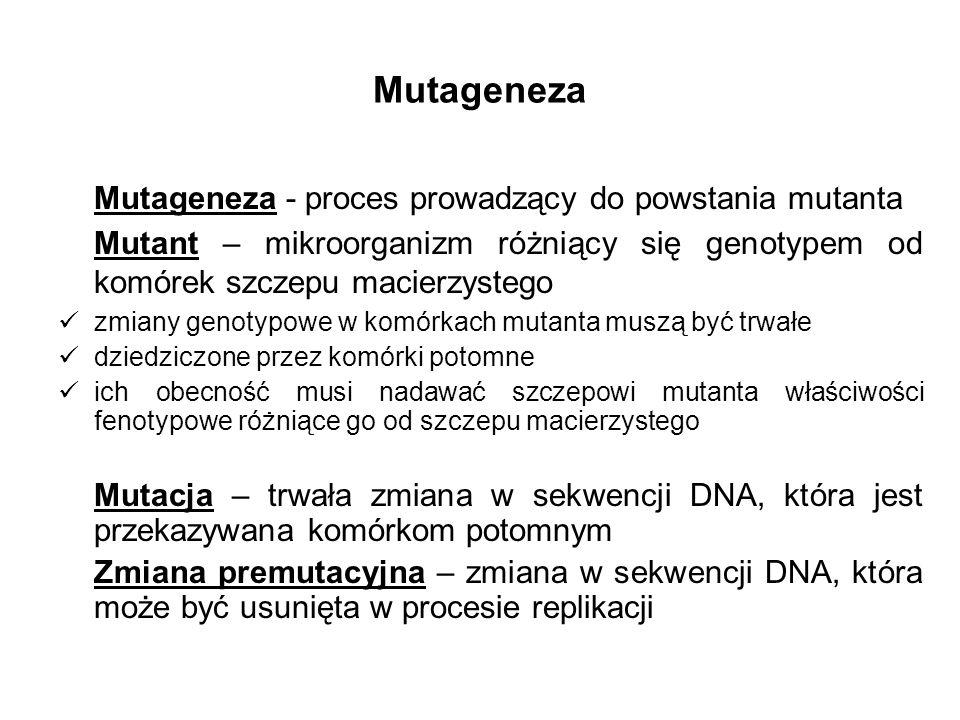 Mutageneza - proces prowadzący do powstania mutanta