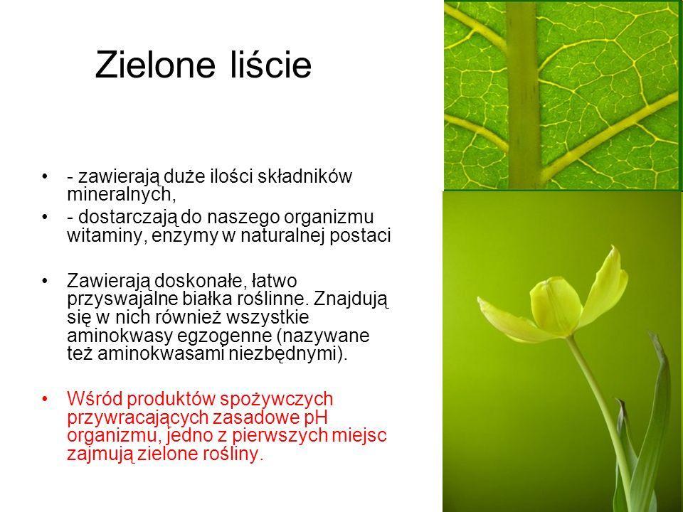 Zielone liście - zawierają duże ilości składników mineralnych,