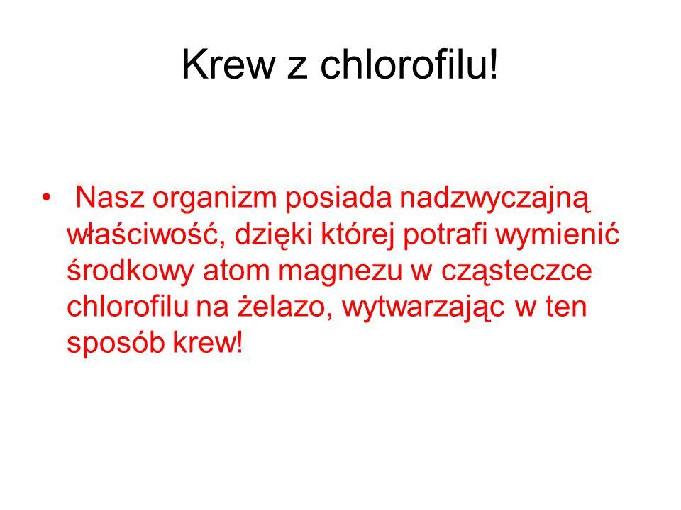 Krew z chlorofilu!