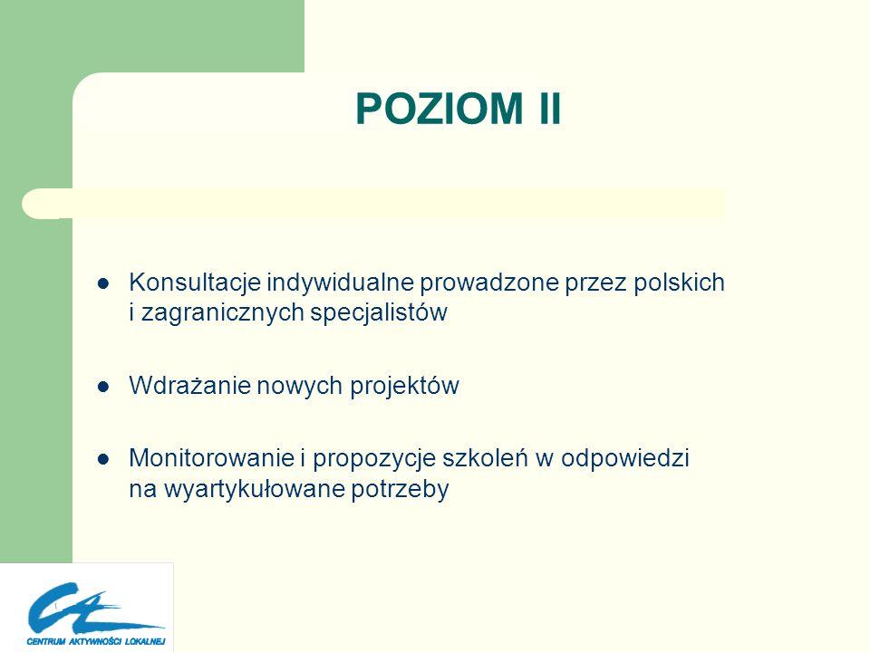 POZIOM IIKonsultacje indywidualne prowadzone przez polskich i zagranicznych specjalistów. Wdrażanie nowych projektów.