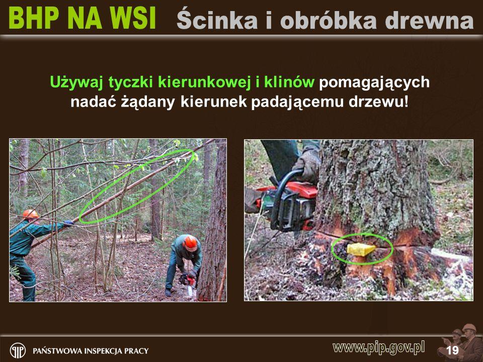 Używaj tyczki kierunkowej i klinów pomagających nadać żądany kierunek padającemu drzewu!