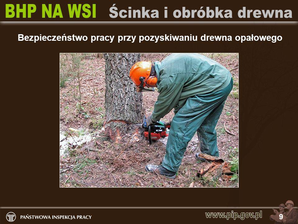 Bezpieczeństwo pracy przy pozyskiwaniu drewna opałowego