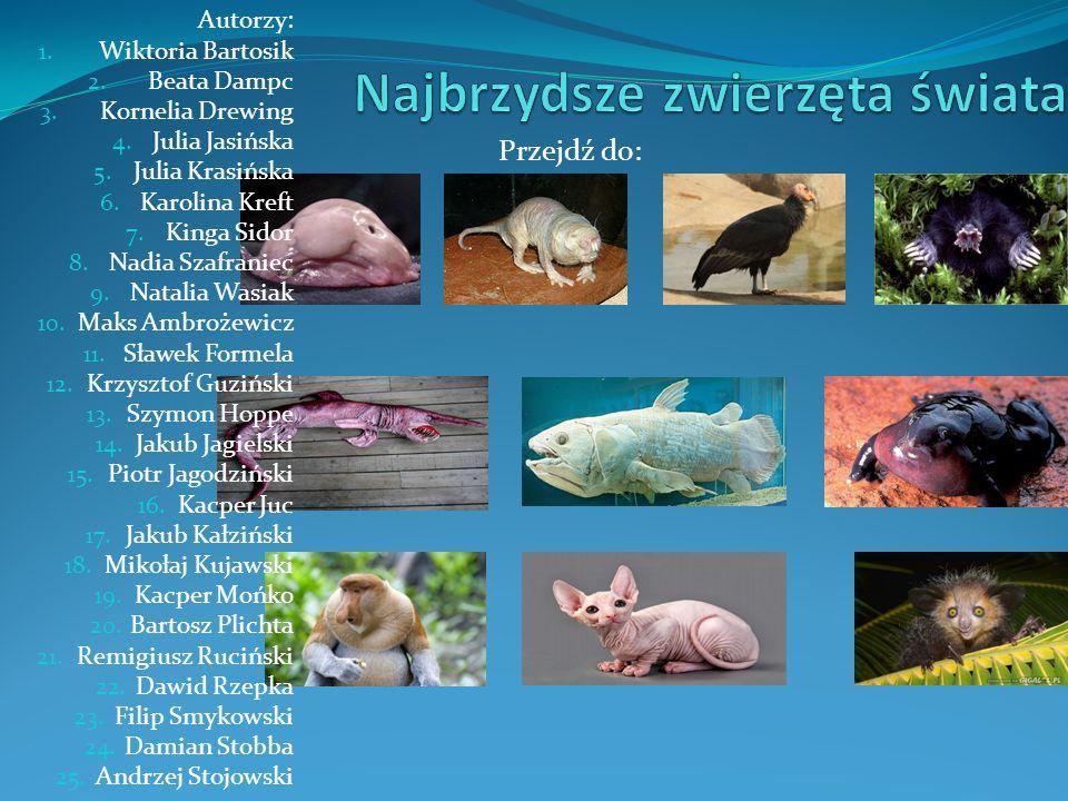Najbrzydsze zwierzęta świata