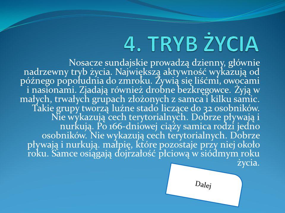 4. TRYB ŻYCIA