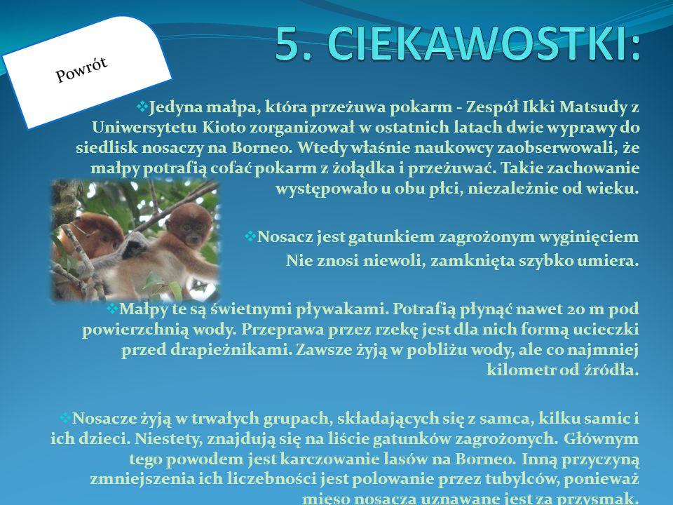 5. CIEKAWOSTKI: