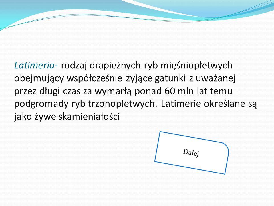 Latimeria- rodzaj drapieżnych ryb mięśniopłetwych obejmujący współcześnie żyjące gatunki z uważanej przez długi czas za wymarłą ponad 60 mln lat temu podgromady ryb trzonopłetwych.