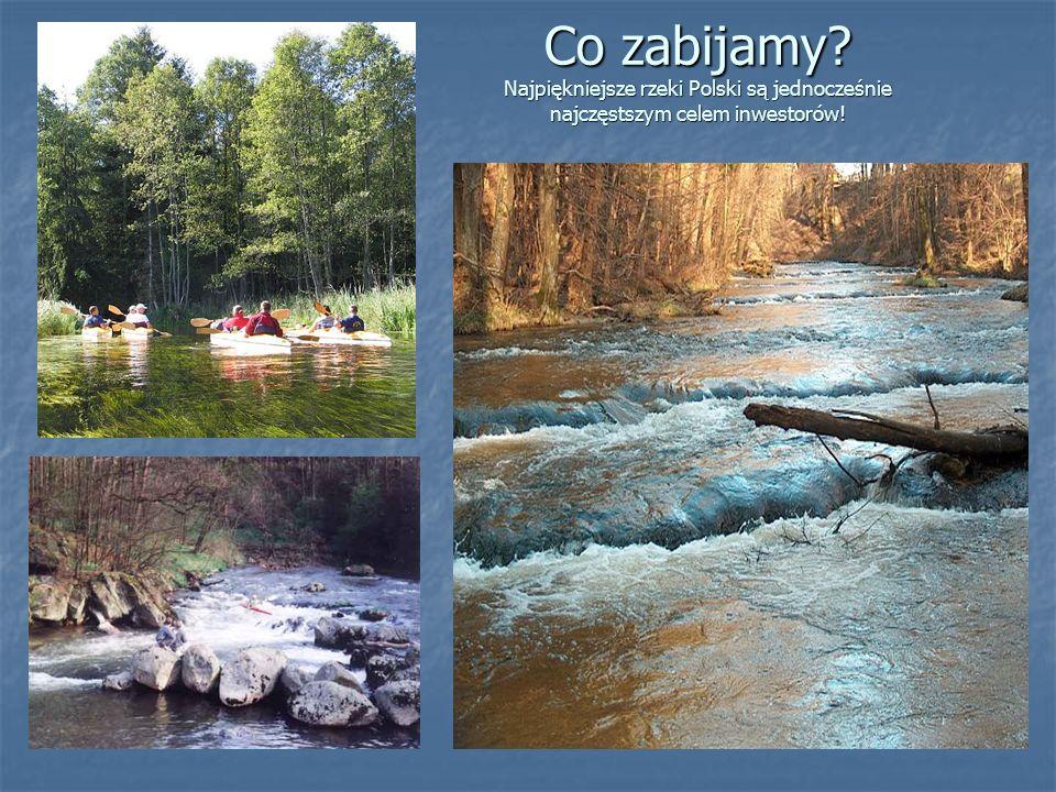 Co zabijamy Najpiękniejsze rzeki Polski są jednocześnie najczęstszym celem inwestorów!