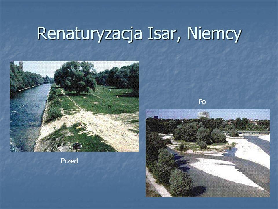 Renaturyzacja Isar, Niemcy