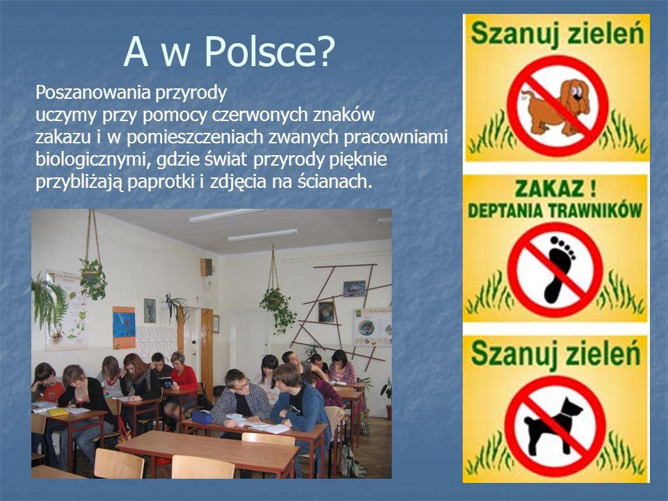A w Polsce Poszanowania przyrody uczymy przy pomocy czerwonych znaków
