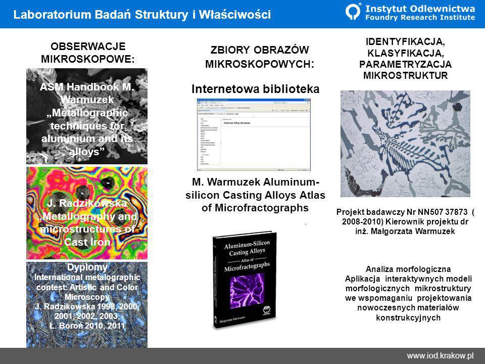 Wyniki Laboratorium Badań Struktury i Właściwości