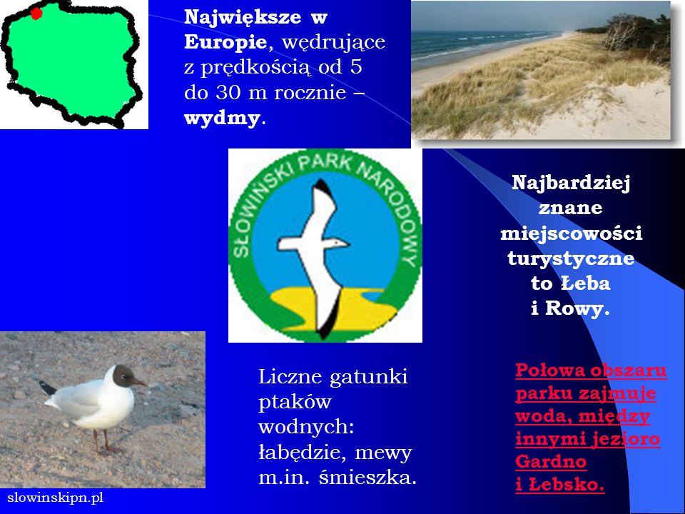 Najbardziej znane miejscowości turystyczne to Łeba i Rowy.